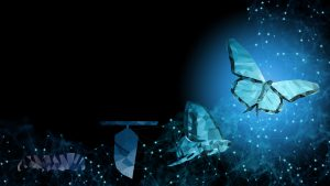 picture of transformation of a chrysalis into a butterfly, symbolizes business change management